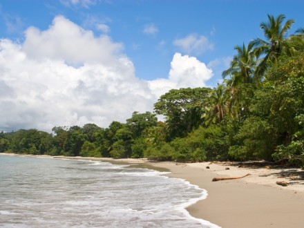 Essential Costa Rica: 7-Day Vacation Package | Beach & Nature Tours | Travel Agency